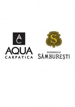 logo-AC&DS